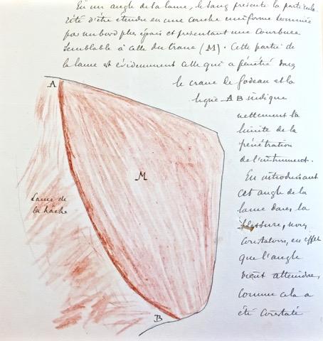 AGR2, Cour D'Assises de Brabant Case file 2109, 1895.